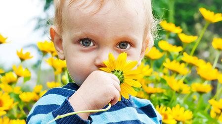 аллергия на весеннее солнце фото